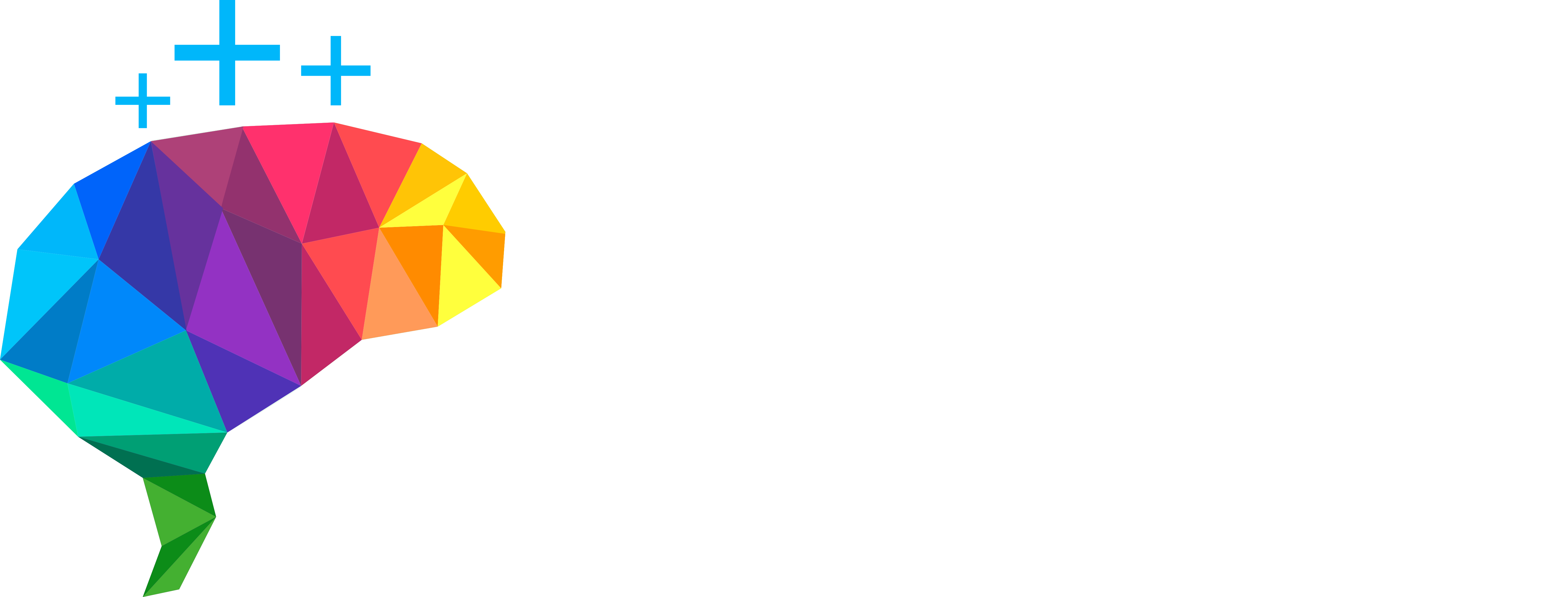 Wize Interactive